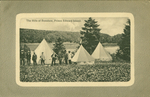 The Hills of Bonshaw