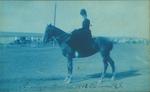 Blue-tinted Postcards