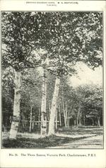 The Three Sisters, Victoria Park, Charlottetown, P.E.I.