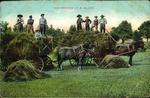 """Hay-Making"", P.E.Island."