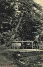 A Rural Scene in Prince Edward Island