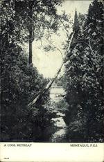 A Cool Retreat, Montague, P.E.I.